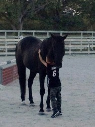 Equine Therapy: Learning Empathy from a Horse | Empathy and Animals | Scoop.it