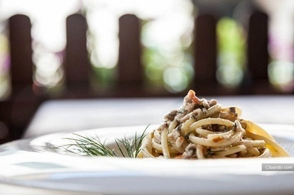 I ristoranti ai Castelli Romani - Cibando Blog | Best Food&Beverage in Italy | Scoop.it