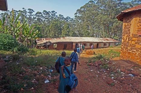 Lancement de la campagne Ecole Digne! | Économie et développement international | Scoop.it