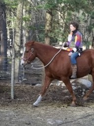Why do you Get Off? | Holistic Horses from PENZANCE Equine Integrative Solutions | Scoop.it