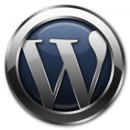 Comment trouver un thème pour mon bog Wordpress | Bien bloguer | Scoop.it