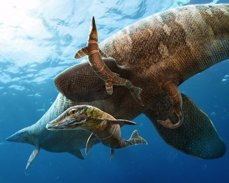 Fossil shows Prehistoric Reptile Gave Birth in Open Ocean | Geology | Scoop.it