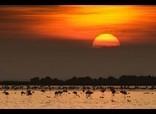 La Unesco designa a las Terres de l'Ebre nueva reserva de la biosfera | Me interesan | Scoop.it
