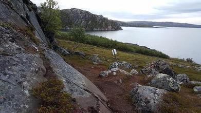 Des gravures rupestres découvertes sur le site d'un terminal pétrolier en projet en Norvège - Paperblog | Formule | Scoop.it