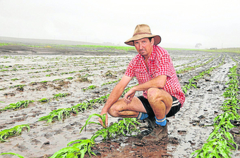 Crop washed away - Queensland Country Life | Farming and Agriculture | Scoop.it
