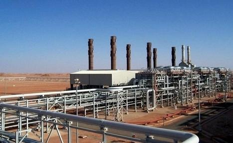 Libya, Egypt to tighten oil fields security following Algeria's crisis | Égypt-actus | Scoop.it