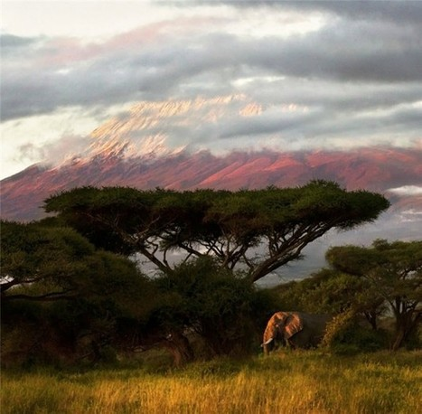 Amazing Kenya – Country Photography | Topics of my interest | Scoop.it