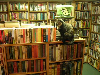 En toute logique on devrait interdire les bibliothèques publiques - Framablog | O.B.N.I | Scoop.it