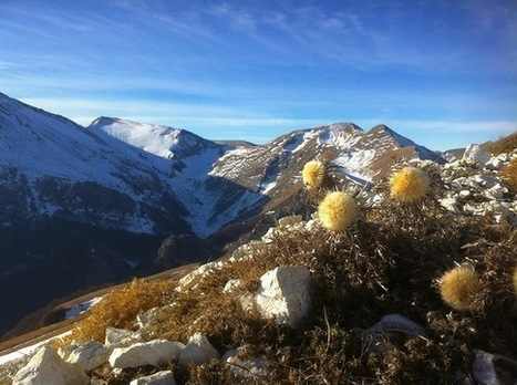 Le Marche: Earthquakes In Italy's Mountains | Le Marche another Italy | Scoop.it