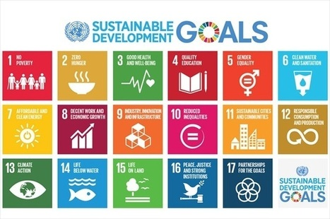 """""""Central role"""" needed for ethics in Sustainable Development Goals 