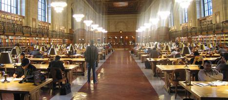 L'accès à Internet dans les bibliothèques menacé ? | Bibliothèque, rhubarbe et gougnafier | Scoop.it