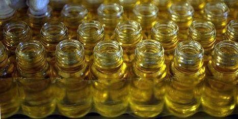 3 huiles essentielles incontournables pour lutter contre le stress | Huiles essentielles HE | Scoop.it