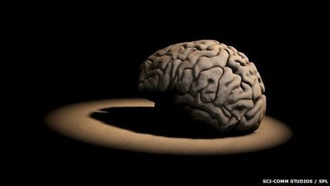 EC 'confident' in brain project | The future of medicine and health | Scoop.it