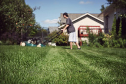 Did Jack Welch's Best Advice Go To His Lawn Boy? | Organizational Management | Scoop.it