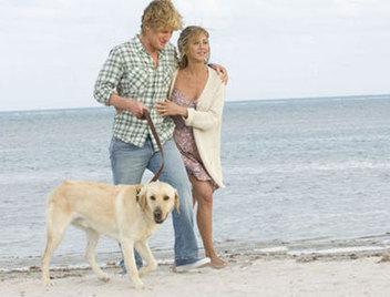 Les 4 types d'efforts essentiels pour un couple qui dure | Actus vues par TousPourUn | Scoop.it