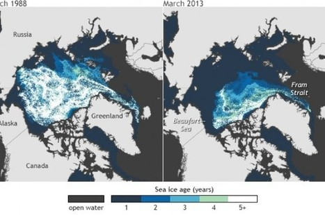 Watch: Amazing Visualization Of Arctic Ice Over The Last 25 Years   I Fucking Love Science   Environmental Policy   Scoop.it