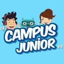 Le Campus Junior - Apprendre scratch en s'amusant | Infos CDI | Scoop.it