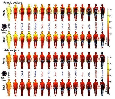 This Chart Shows Where People Want to Be Touched | Teaching Interpersonal Communication in a Business Communication Course | Scoop.it