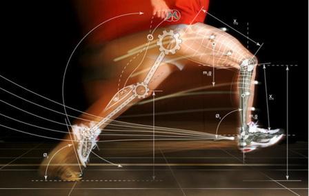 Biomecánica aplicada | Deporte y Salud UMH | Scoop.it