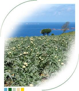 Agrival, extraction végétale en Bretagne - Agrival, maillon de la filière algues | Valorisation des algues | Scoop.it
