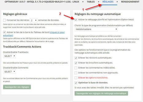 Optimiser son site régulièrement et automatiquement | WordPress France | Scoop.it