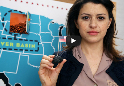 Video: Arrested Development Co-Star Exposes the Coal Export Conspiracy | EcoWatch | Scoop.it
