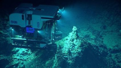 La fosse des Mariannes, l'endroit le plus profond du monde | Biodiversité | Scoop.it