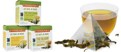 Participez à la création d'un nouveau thé ETHIQUABLE ! | ETHIQUABLE | Scoop.it