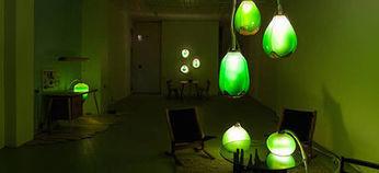 Design : oubliez les plantes vertes, adoptez des algues ! | Algues et énergies | Scoop.it