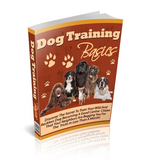 Dog Training Basics | Likessurbaus1966 | Scoop.it