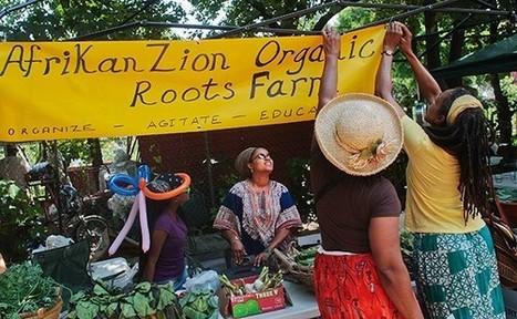 Getting Fresh Fruits and Vegetables Into Poor Neighborhoods Doesn't Make Poor People Healthier | Agricultura Urbana de Rosario | Scoop.it