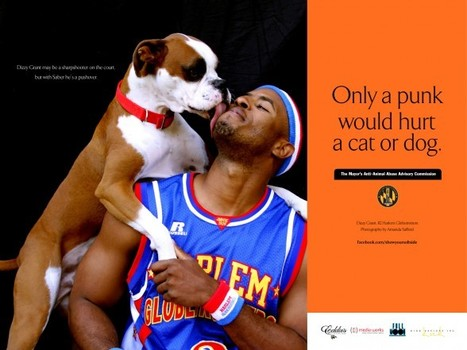 Harlem Globetrotter Dizzy Grant Joins Anti-Animal Abuse Campaign ... | Animal Cruelty | Scoop.it