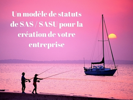 Modèle de statuts de SAS / SASU - Paranormale Enteprise | Entrepreneurs du Web | Scoop.it