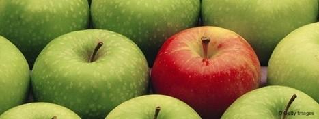 Le vert rend plus créatif, le rouge plus combatif - HBR   Be a Wise Leader : Intrapreneurship & Entrepreneurship   Scoop.it