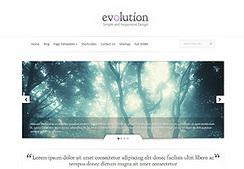 WordPress Themes Gallery | Elegant Themes | Template & Webdesign | Scoop.it