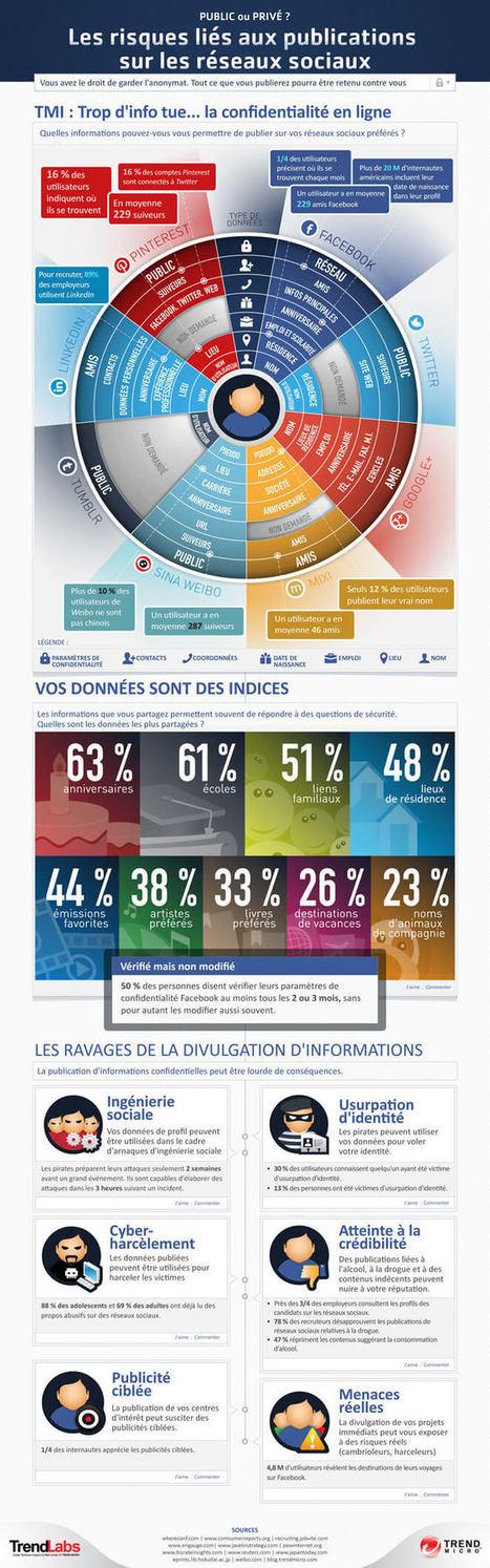 Infographie: Quels sont les risques liés au fait de publier sur les réseaux sociaux | Édulogia | transition digitale : RSE, community manager, collaboration | Scoop.it