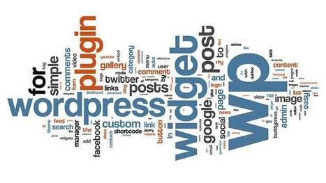 Why You Should Be Using WordPress for E-commerce - BrainSINS Blog (blog) | SEO Web Design | Scoop.it