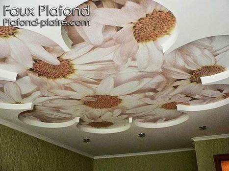 Faux plafond en forme d 39 un papillon for Decoration platre chambre a coucher