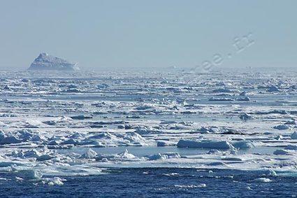 image #satellite journalière de la côte ouest du #Groenland - #banquise - #Disko | Hurtigruten Arctique Antarctique | Scoop.it