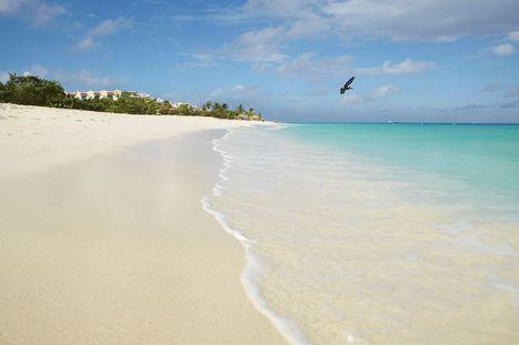 Travel: Aruba is a magical Caribbean island of pristine beaches and spectacular food | Beach Maniac | Scoop.it
