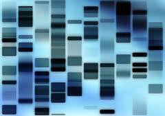 Law to expand New York's DNA databank signed | MN News Hound | Scoop.it