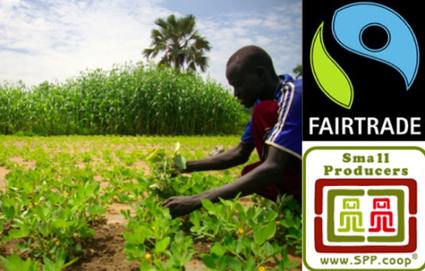 New study compares Fairtrade International to Small Producer Symbol | Small Farmers. Big Change. | Fair and Sustainable Trade | Scoop.it