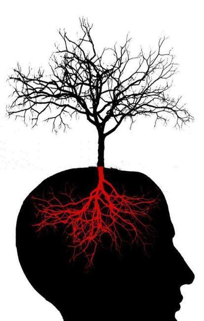 ¿Depende de nosotros que nos crezcan nuevas neuronas? | Acción positiva: #Alternativas | Scoop.it