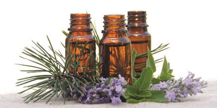 Avi Naturals is a Manufacturer and 100% Pure and Organic Essential Oils… | Essential Oils | Scoop.it
