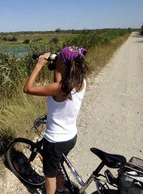 Bouches-du-Rhône : les loisirs en plein air ont la cote | Balades, randonnées, activités de pleine nature | Scoop.it