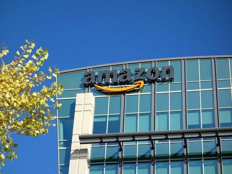 Amazon Launches 'Pay With Amazon' Buttons for Mobile Apps | Commerce and Payments | Scoop.it
