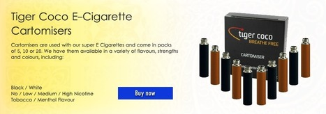 E Cigarette Web – Smokeless Smokin | E-Cigarette Web | Scoop.it