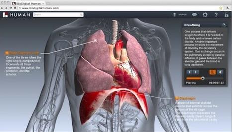 BioDigital recauda US$4M  para construir Google Earth del cuerpo humano | Tecnología Preventiva en Salud | Scoop.it