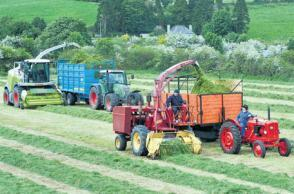 Grain price shoots up as drought hits Europe | Grain Farming | Scoop.it