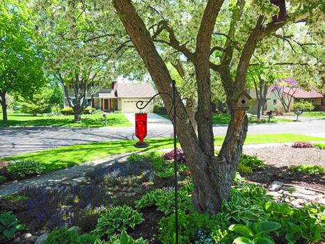 3 Ways To Attract Hummingbirds to Your Garden | Everyday Gardeners | Annie Haven | Haven Brand | Scoop.it